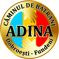 Căminul Adina